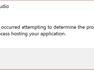 DNX process hosting Fehler